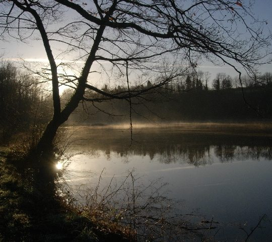 http://www.puyravaudcarp.com/wp-content/uploads/2016/08/dec_2009_lake_20091212_1364684587-540x480.jpg