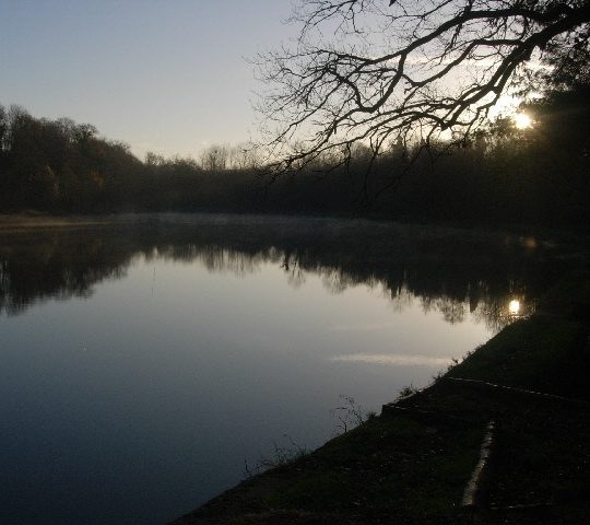 http://www.puyravaudcarp.com/wp-content/uploads/2016/08/lake_from_ye_olde_oak_corner_20091212_1088822398-540x480.jpg