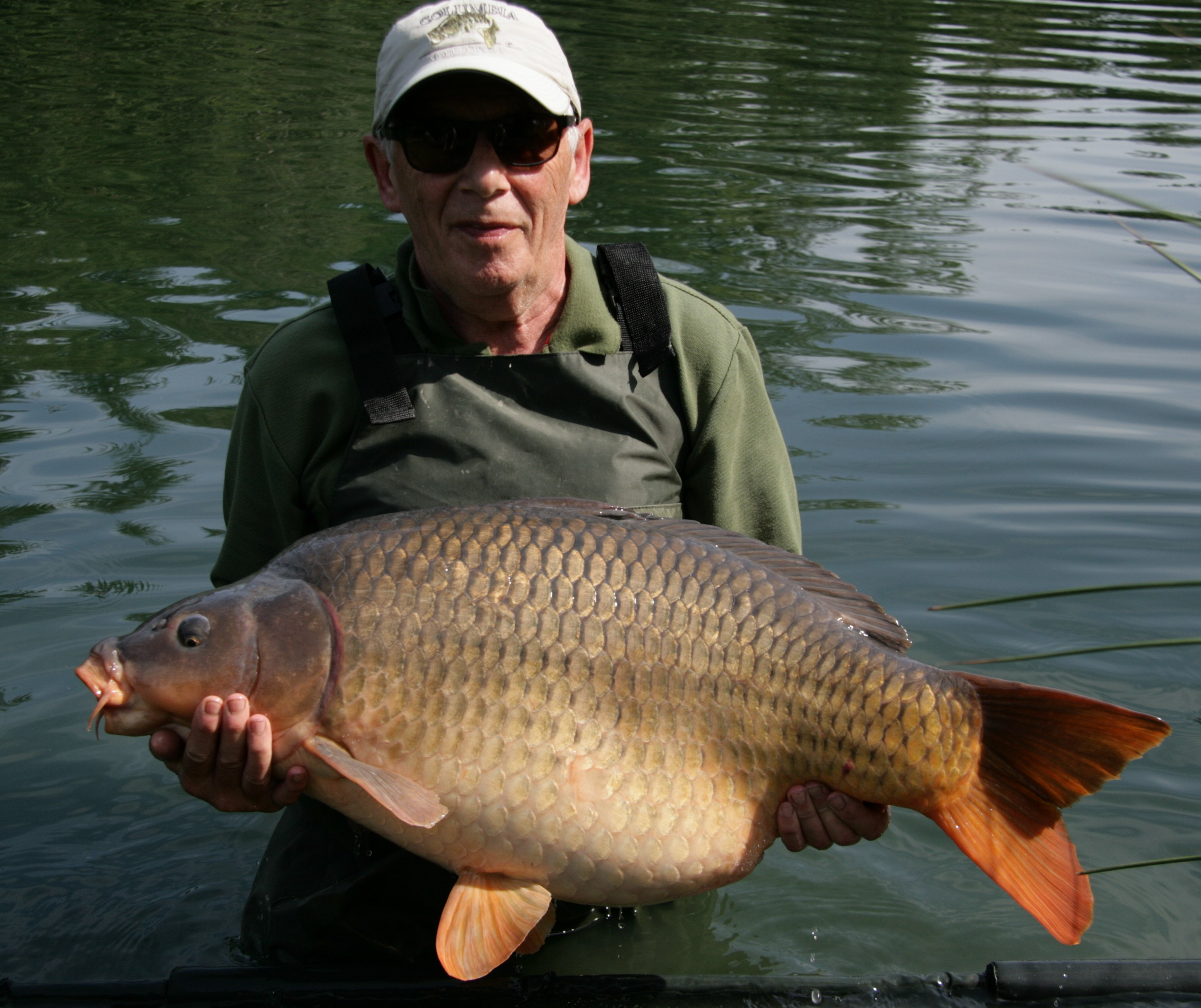 https://www.puyravaudcarp.com/wp-content/uploads/2016/10/36.12-2.jpg