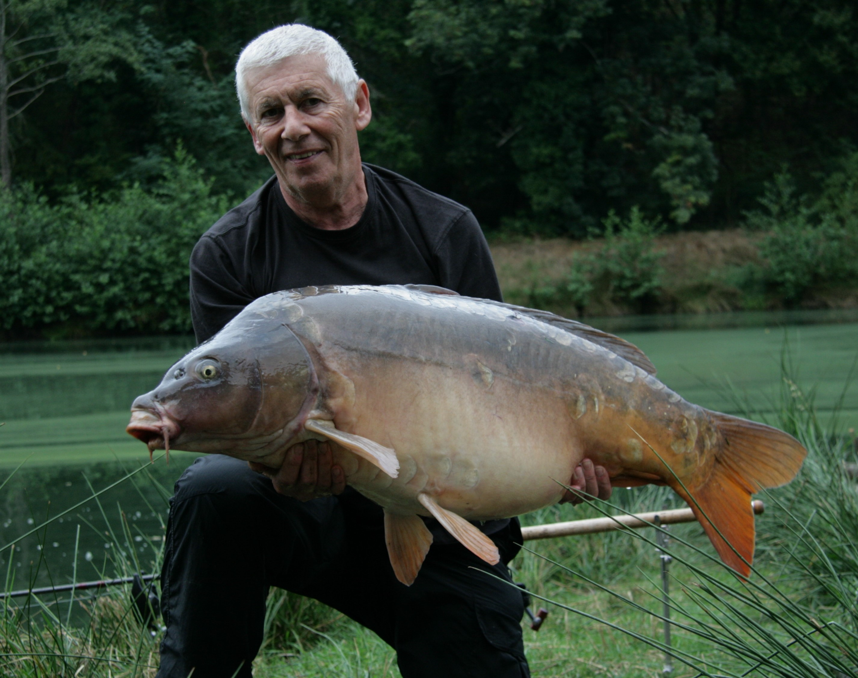 https://www.puyravaudcarp.com/wp-content/uploads/2016/10/44.051-1.jpg