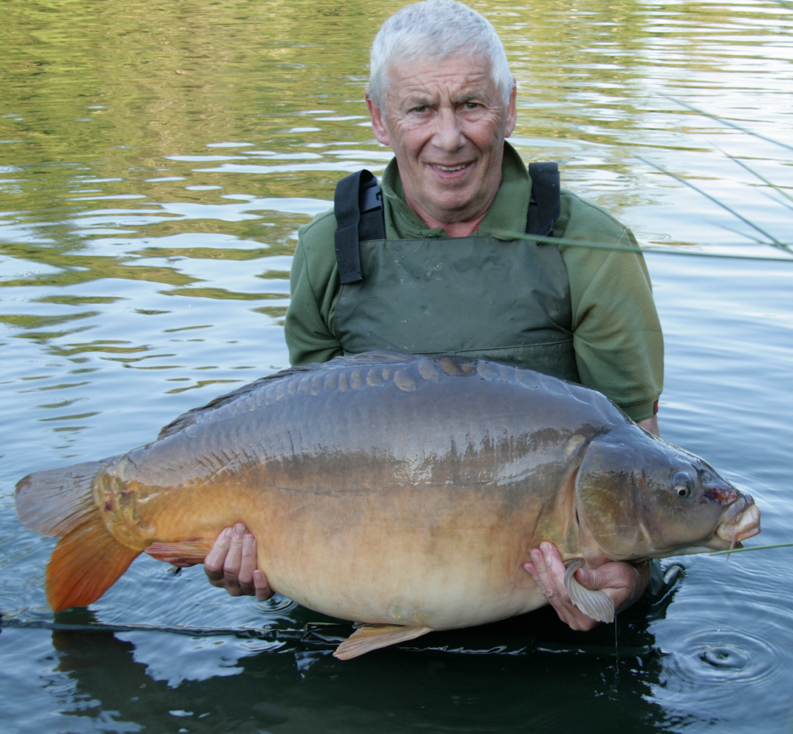 https://www.puyravaudcarp.com/wp-content/uploads/2016/10/49.013.jpg