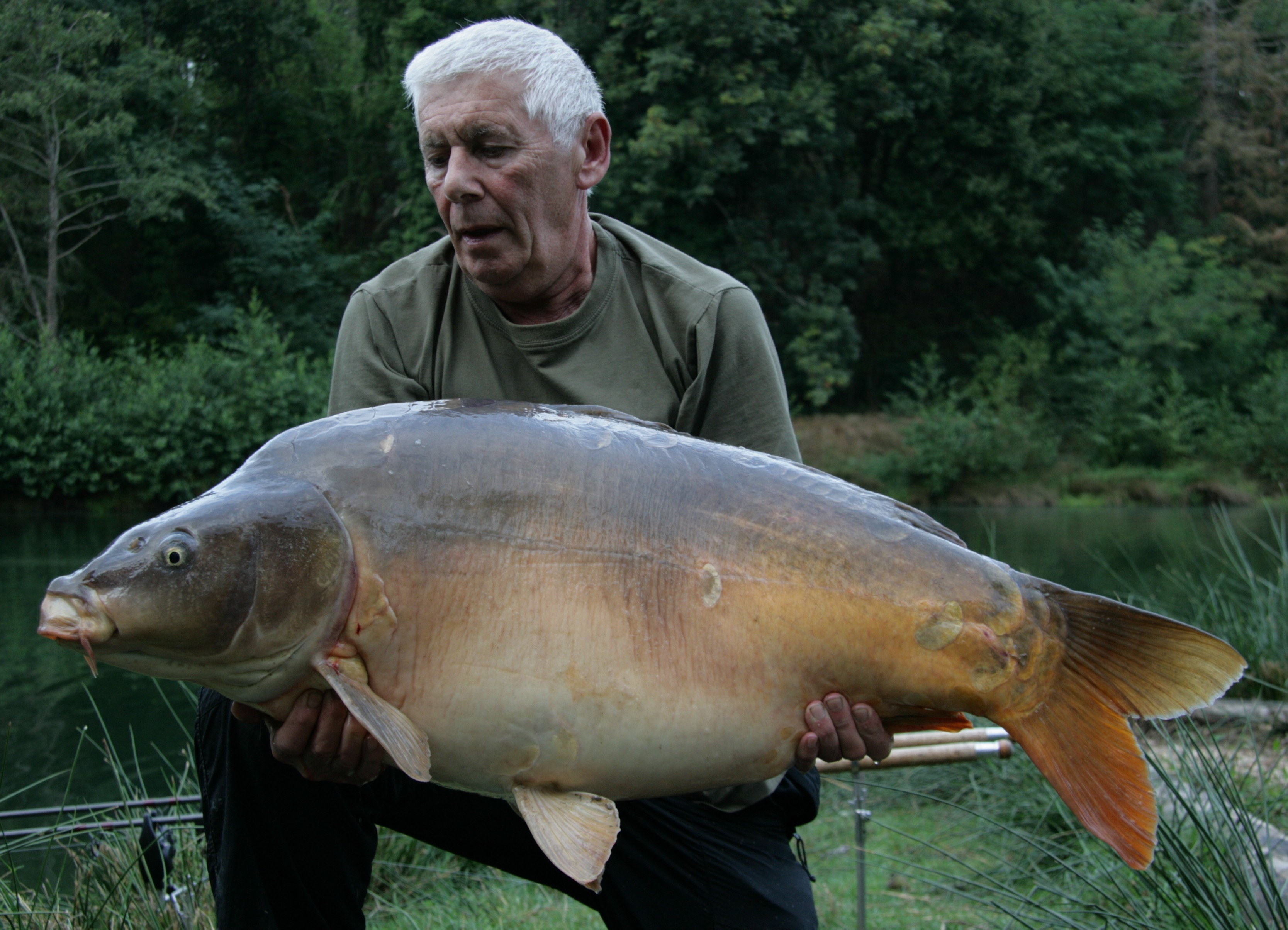 https://www.puyravaudcarp.com/wp-content/uploads/2016/10/49.074.jpg
